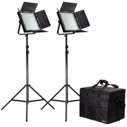 Ikan Kit 2 Led Studio Interview con AB Gold Mount