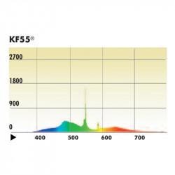 Kino Flo 26W CFL KF55 True Match Ampolleta Fluorescente E26