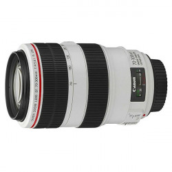 Canon Lente Zoom EF 70-300mm f/4 - 5.6L IS USM Telephoto